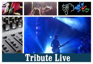 tribute liveCOULEURcadre